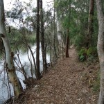 track along river bank